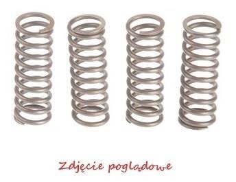 ProX Clutch Spring Kit CRF450R '09-10 + XR650R '00-07